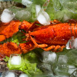 Shrimps and lobster with an ice — Stock Photo #13341251
