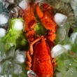 Shrimps and lobster with an ice — Stock Photo #13341252