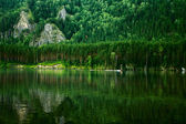 Beautiful summer landscape with lake — Photo