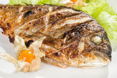 Grilled fish — Fotografia Stock