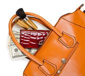 Purse and wallet — Stock Photo