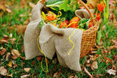 Autumn basket with sacking — Stock Photo