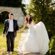 Groom and bride walking — Stock Photo #21626131