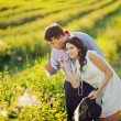 Stock Photo: Heterosexual Couple spending time in field