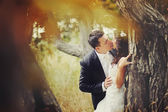 Sensual married couple in forest — Stock Photo