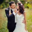 Groom and bride embracing - Stock Photo