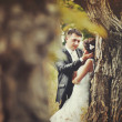 Married Couple in forest — Stock Photo #22826926