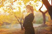 Bellissima giovane donna incinta — Foto Stock