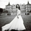 Caucasian young bride next to castle in west Ukraine — Stock Photo #26322993