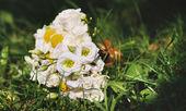 Wedding bouquet — Stock Photo