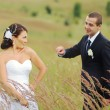 Young wedding couple  in field. — Стоковое фото #33239753