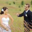 Young wedding couple in field. — Foto Stock #33239753