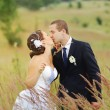 Young wedding couple in field. — Stock Photo