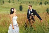Wedding couple in field — Stock fotografie