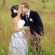 Wedding coupleat field. — Stockfoto #33716861