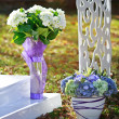 Wedding decoration in garden. — Stockfoto #33717357