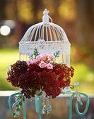 Wedding decoration. — Stock Photo