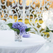 Wedding decoration in garden. — Lizenzfreies Foto
