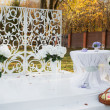 Wedding decoration in garden. — Foto Stock