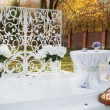 Wedding decoration in garden. — Stock Photo