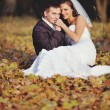 Happy young wedding couple in autumn forest. — Stock Photo #34480427