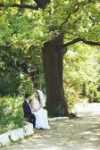 Newlywed couple together. — Stock Photo