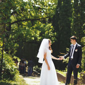 Young wedding couple walking in park. — Photo