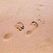 Footprint on sand beach — Stock Photo