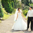 Happy wedding couple walking together — Stock Photo #38315317