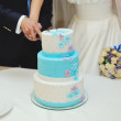 Bride and groom cutting wedding cake — Stock Photo #38315343
