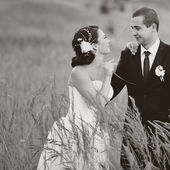 Wedding couple together at field — Stock Photo