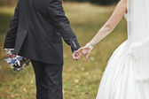 Groom and bride holding hands, wedding picture. — Stock Photo