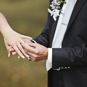 Hands of wedding couple putting golden rings — Stockfoto