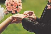 Wedding picture. Bride and groom holding hands. — Stock Photo
