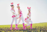 Funny bunny outside. — Stock Photo