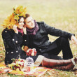 Young sweet couple having date in autumn park. — Stock Photo #42434011