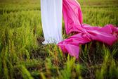 Jovem mulher grávida caucasiana em um vestido grego branco — Foto Stock