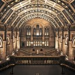 Постер, плакат: Interior of Natural History Museum London