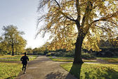 Running in the park — Stock Photo
