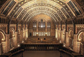 Interior of Natural History Museum, London. HDR — Stock Photo