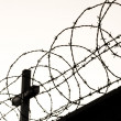 Stock Photo: Cross behind barbed wire