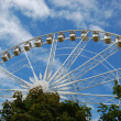 Ferris wheel above trees in Tuileries gardens in summer. — Stock fotografie #12525840