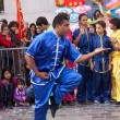 Stock Photo: Chinese martial arts on opening of Moon festival at Paris