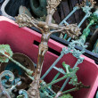 Crucifix and iron scrap in pink box at flea market - Stock Photo