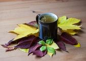 Cup of fennel tea with seeds. Autumnal decoration — Stock Photo