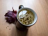Taza de té de hinojo con semillas. — Foto de Stock