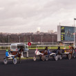 PARIS - DECEMBER 16: Trotters race in Paris Vincennes hippodrome as seen on December 16, 2012 in Paris, France. Vincennes racetrack was opened at 1863. — Stock Photo
