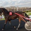 Stock Photo: PARIS - DECEMBER 16: unidentified jockey trains before trotters race in Paris Vincennes hippodrome on December 16, 2012 in Paris, France.