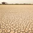 la terra asciutta — Foto Stock