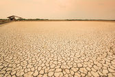 Land with dry and cracked ground — Foto Stock